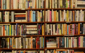 a tightly filled shelf of books