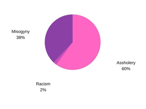 A pink and purple pie chart, showing 38% misogyny, 60% assholery, 2% racism.