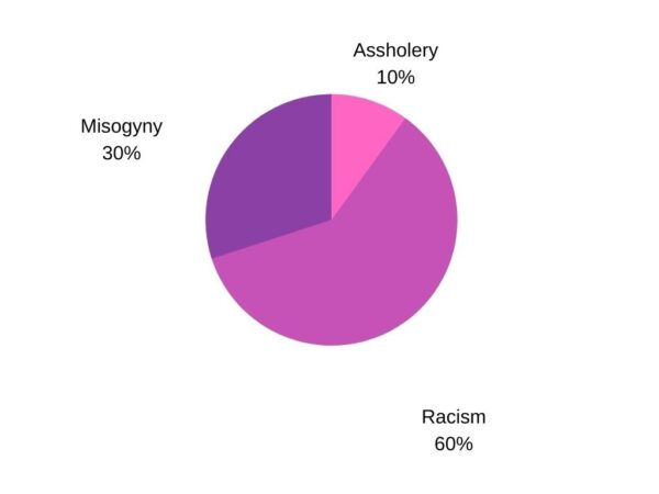 A pink and purple pie chart showing 30% misogyny, 10% assholery, 60% racism.