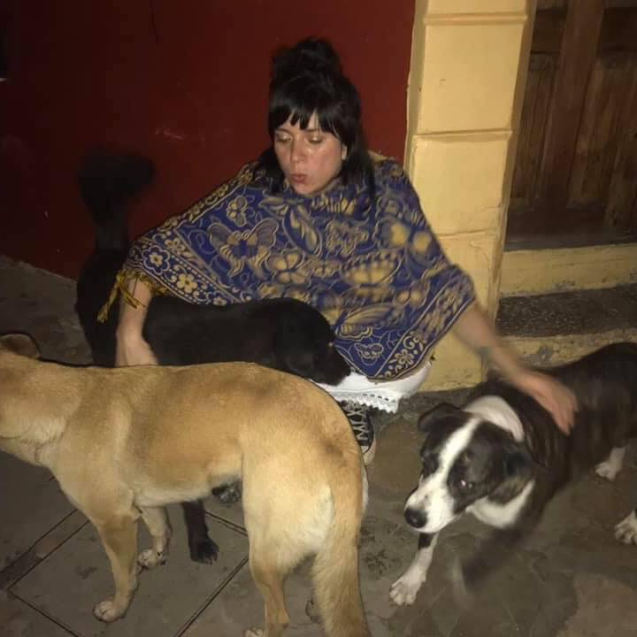 The author squats down to pet the three wild dogs that have surrounded her.